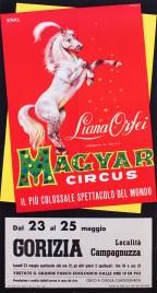 Liana Orfei presenta Magyar Circus Circus poster - Italy, 1966