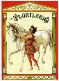 Il Florilegio - Darix Togni Circus Ticket - 0