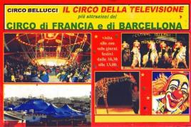 Circo Bellucci Circus Ticket - 0