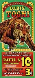 Circo Darix Togni Circus Ticket - 2019